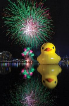 Ducks and Fireworks